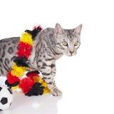 Gato de Bengala con el balón de fútbol Foto de archivo libre de regalías
