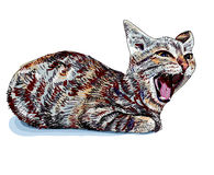 Gato de bocejo Imagem de Stock Royalty Free