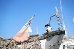 Gato de bostezo en el barco inusitado viejo con la bandera destruida de Malta imágenes de archivo libres de regalías