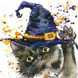 Gato de Dia das Bruxas e chapéu da bruxa fundo da ilustração da aquarela Fotos de Stock Royalty Free