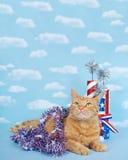 Gato de gato malhado patriótico fotografia de stock royalty free