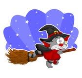 Gato de Halloween Imagem de Stock