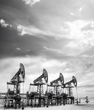Gato de la bomba de petróleo Imagen de archivo