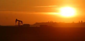 Gato de la bomba de petróleo en la salida del sol Foto de archivo