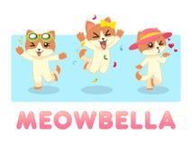 Gato de la hembra de Meowbella Imágenes de archivo libres de regalías