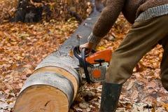 Gato de la madera de construcción con la motosierra Imágenes de archivo libres de regalías