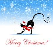 Gato de la Navidad para su diseño Fotografía de archivo