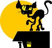 Gato de la noche Imágenes de archivo libres de regalías