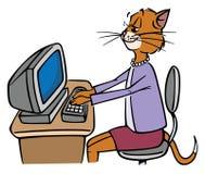 Gato de la secretaria Imágenes de archivo libres de regalías