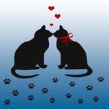 Gato de la tarjeta del día de San Valentín Foto de archivo