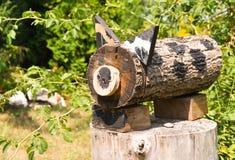 Gato de madera en un diseño del paisaje fotografía de archivo