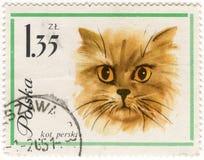 Gato (de pelo largo) persa en sello del poste de la vendimia Imagen de archivo libre de regalías