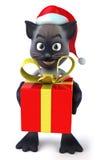 Gato de Santa Fotografía de archivo libre de regalías