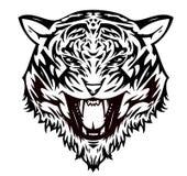 Gato de tigre agresivo () Fotografía de archivo