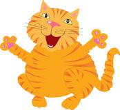 Gato del canto del jengibre Fotografía de archivo