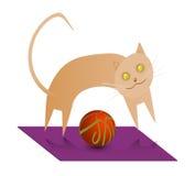 Gato del cinamomo Imágenes de archivo libres de regalías