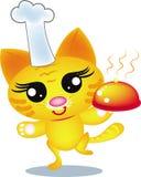Gato del cocinero Foto de archivo