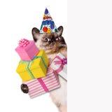Gato del cumpleaños Imágenes de archivo libres de regalías