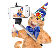 Gato del cumpleaños que toma un selfie así como un smartphone Imagen de archivo