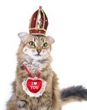 Gato del día de tarjeta del día de San Valentín del St Fotografía de archivo libre de regalías