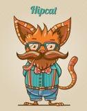 Gato del estilo del inconformista Imagen de archivo libre de regalías