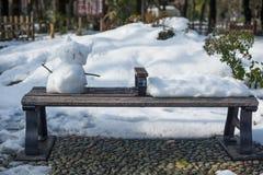Gato del jardín y de la nieve, Yokohama, Tokio, Japón Imagenes de archivo