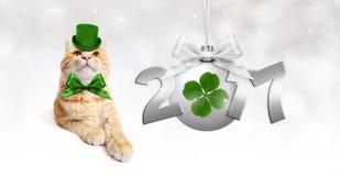 Gato del jengibre con la bola de plata de la Navidad con el trébol verde, cinta Imagen de archivo libre de regalías