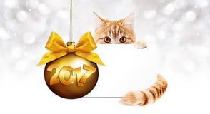 gato del jengibre de 2017 textos con la tarjeta y bola de oro de la Navidad con ri Imagen de archivo libre de regalías