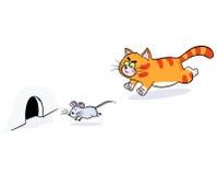 Gato del jengibre que persigue un ratón Fotografía de archivo