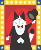 Gato del mago Imagen de archivo libre de regalías