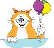 Gato del partido Fotografía de archivo libre de regalías