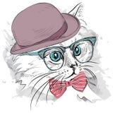 Gato del retrato de la imagen en el sombrero, el pañuelo y los vidrios Ilustración del vector Imagen de archivo