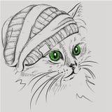Gato del retrato de la imagen en el sombrero Ilustración del vector Foto de archivo