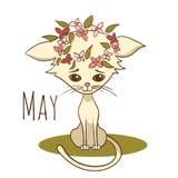 Gato del vector de la historieta para el mes civil mayo Fotos de archivo libres de regalías