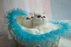 Gato do brinquedo Foto de Stock