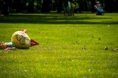 Gato do brinquedo em um gramado do verão Foto de Stock Royalty Free