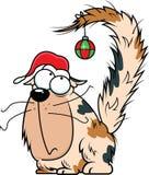 Gato do Natal dos desenhos animados Imagens de Stock