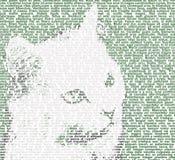 Gato do texto Fotografia de Stock