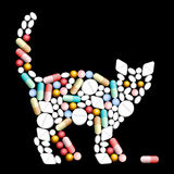 Gato dos comprimidos das tabuletas Foto de Stock