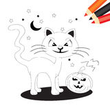 Gato e abóbora ilustração royalty free