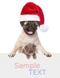 Gato e cão com o chapéu vermelho de Santa Claus acima da bandeira branca Isolado no branco Imagens de Stock Royalty Free