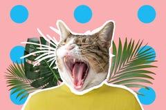 Gato e colagem em folha de palmeira, projeto de conceito do pop art Fundo vibrante mínimo do verão imagens de stock royalty free