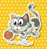 Gato e corda Foto de Stock