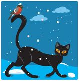 Gato e pássaro Foto de Stock