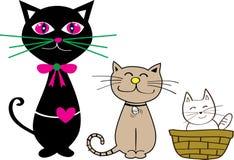 Gato e vaquinha Foto de Stock