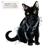 Gato ejemplo del animal doméstico del hogar de la acuarela Los gatos crían series libre illustration