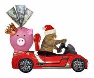 Gato em um automóvel vermelho com um mealheiro fotografia de stock royalty free