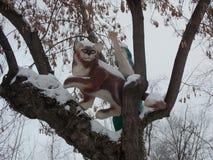 Gato em uma árvore fotografia de stock