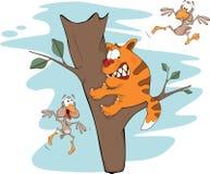 Gato em uma árvore e pássaros. Desenhos animados Fotos de Stock Royalty Free