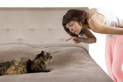 Gato em uma cama imagens de stock